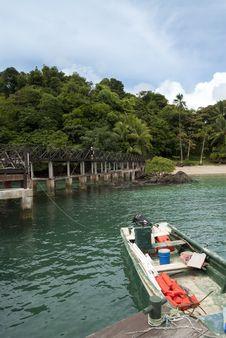 Free Coiba Stock Photos - 16712773