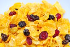 Free Corn Flakes Stock Photography - 16712822