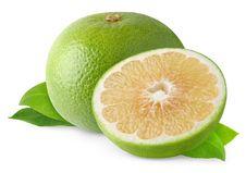 Free White Grapefruit Stock Images - 16715124