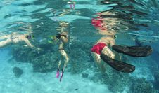 Underwater View Of Snorkelers In Clear Water. Royalty Free Stock Images
