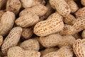 Free Peanut Royalty Free Stock Photography - 16720867