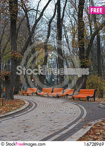 Free Benches In City Park Royalty Free Stock Images - 16728969