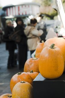 Free Queue For The Pumpkins Royalty Free Stock Photo - 16720105