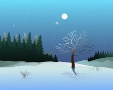 Free Winter Landscape Royalty Free Stock Images - 16720279