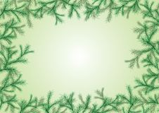 Free Spruce Frame Stock Photo - 16720690