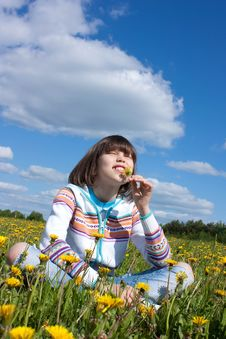 Free Little Girl On The Field Stock Photos - 16721273
