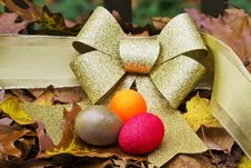 Is Your Autumn Of Life Portfolio Diversified Stock Photos