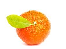 Free Mandarin Stock Image - 16723121