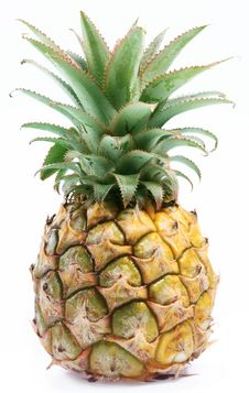 Free Small Desert Ripe Pineapple. Stock Photography - 16724432