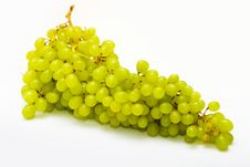 Free Bunch Of Ripe Grapes Stock Images - 16724624