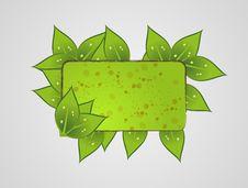 Free Green Leaf Frame Stock Image - 16725781