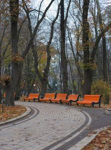 Benches In City Park Royalty Free Stock Images