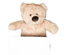 Free Lovely, Cute Teddy Bear Holding A Sheet Of Paper Stock Photo - 16730140