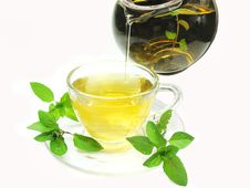 Pouring Herbal Tea With Mint Extract Stock Photo