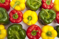 Colourful Peppers On The White Background Royalty Free Stock Photography