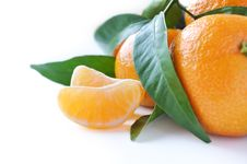 Free Juicy Organic Tangerines Royalty Free Stock Image - 16733846
