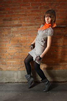 Free Girl At A Brick Wall Stock Photography - 16734402