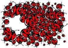 Free Ladybugs Frame Royalty Free Stock Photo - 16736345