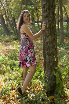 Young Woman And Tree Stock Images
