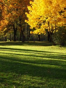 Free Autumn. Royalty Free Stock Image - 16739756