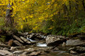 Free Autumn Foliage Over Little Pigeon River Stock Photography - 16745532