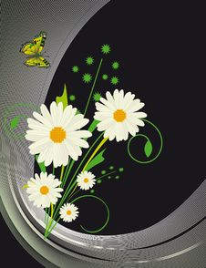 Free Abstract Background With Daisies Stock Photos - 16740143