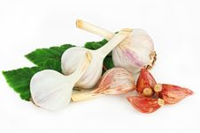 Free Garlic Stock Photo - 16740390