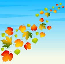 Free Background With Autumnal Leaves. Royalty Free Stock Images - 16740659