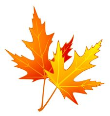 Free Autumnal Leave. Stock Image - 16740821