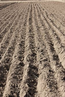 Free Ploughed Field Stock Photo - 16742590