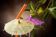 Free Paper Umbrella Royalty Free Stock Photos - 16744588
