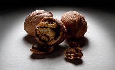 Free Walnut Stock Images - 16744734