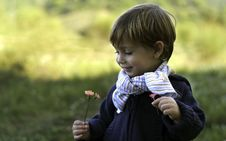 Free Little Boy Wearing A Scarf Is Holding Flowers Royalty Free Stock Photo - 16745735