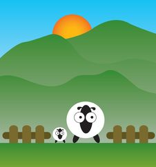Free Sheep Royalty Free Stock Images - 16746799