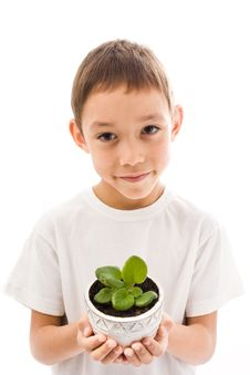 Free Boy Holding Flower Stock Photos - 16748503