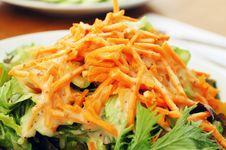 Free Fresh Vegetable Salad Stock Images - 16749044
