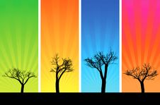 Free Trees And Sunbeam Royalty Free Stock Photography - 16751147