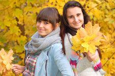 Free Autumn Portrait Royalty Free Stock Photo - 16752065