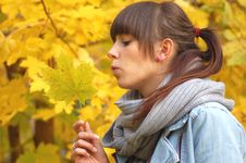 Autumn Portrait Stock Images