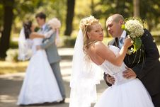 Happy Bride And Groom At The Wedding Walk Royalty Free Stock Images