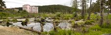 Free Bog Stock Photo - 16756720
