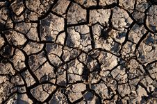 Free Cracked Dirt Royalty Free Stock Photo - 16757285