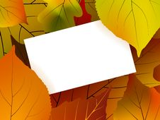 Free Blank Card Surrounded By Beautiful Autumn Leaves Stock Images - 16758924