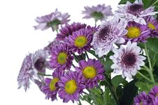 Free Detail Of Bunch Of Flowers Stock Image - 16759941