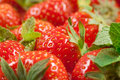 Free Strawberry With Green Leaf Stock Photography - 16761012