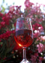 Free Glass Of Red Wine Royalty Free Stock Image - 16768046