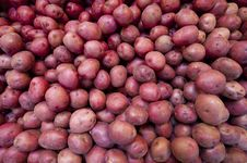 Free Red Potatoes Royalty Free Stock Photo - 16760735