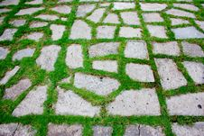 Free Green Pattern Walkway-2 Royalty Free Stock Images - 16760909