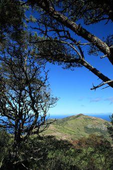 Free Landmark Of Man And Horse On St Helena Island Stock Photo - 16763100