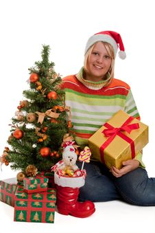 Free Under The Christmas Tree Stock Photo - 16764990